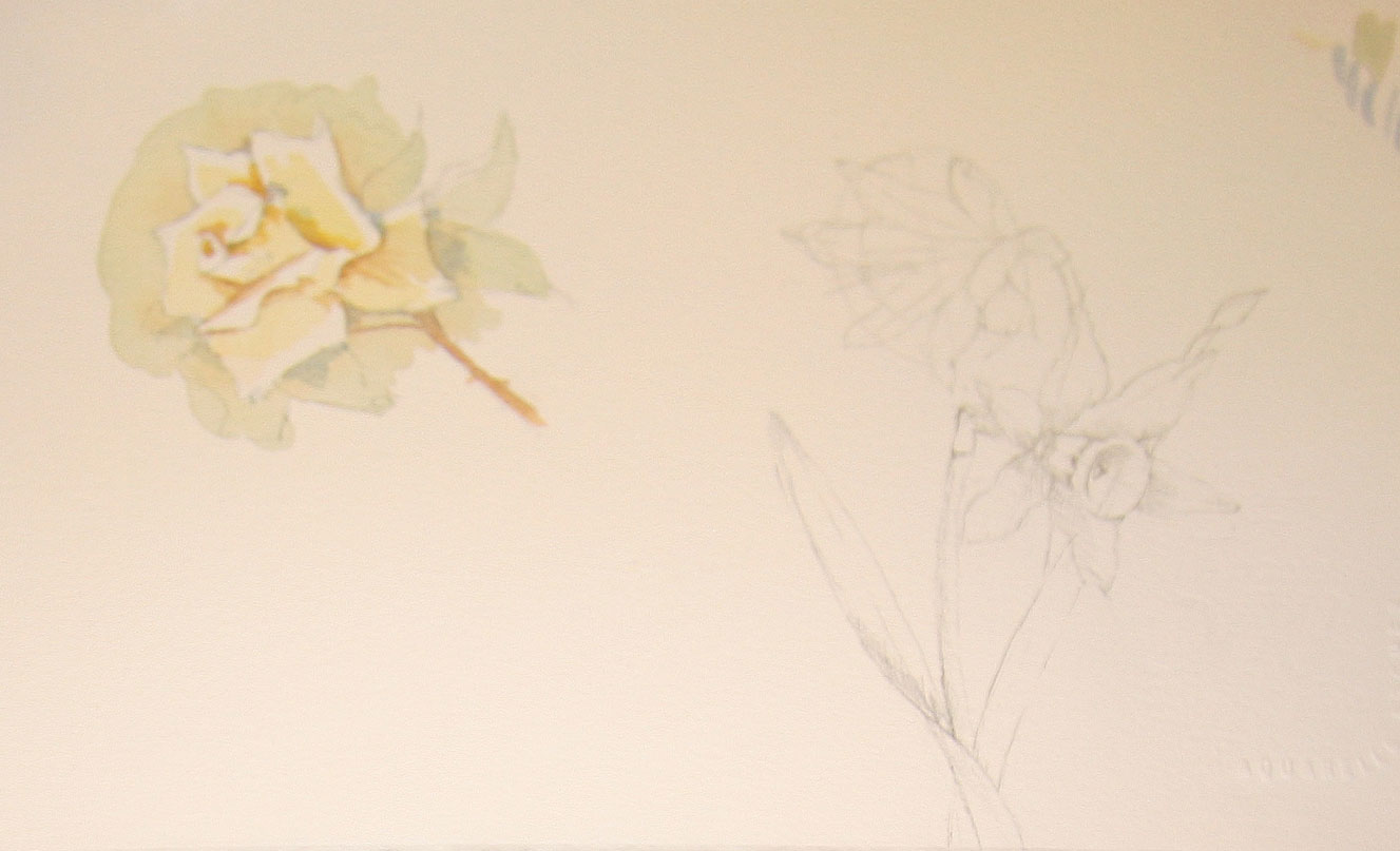 flower sketches by Melissa Dinwiddie
