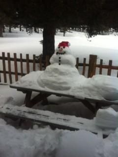 Montana Snowman