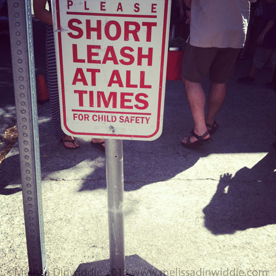 Short Leash at All Times