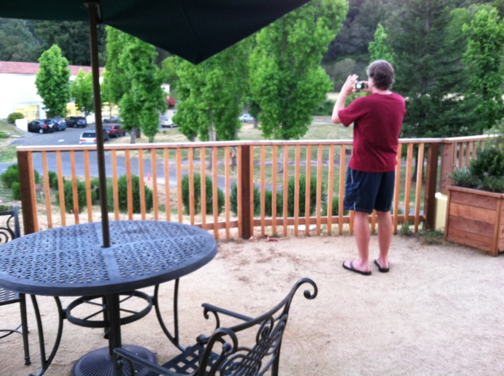 Josiah, snapping pics of deer on the lawn
