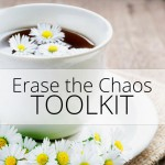 Erase the Chaos Toolkit