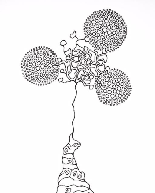 TreeFoil doodle by Melissa Dinwiddie