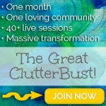The Great ClutterBust